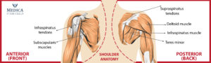 Medica Stem cell Therapy for Rotator Cuff Injury